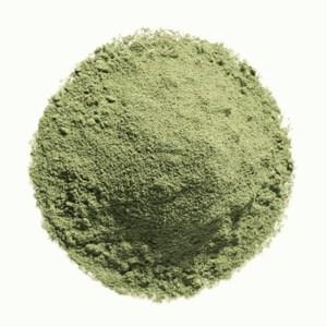 poudre d'argile verte
