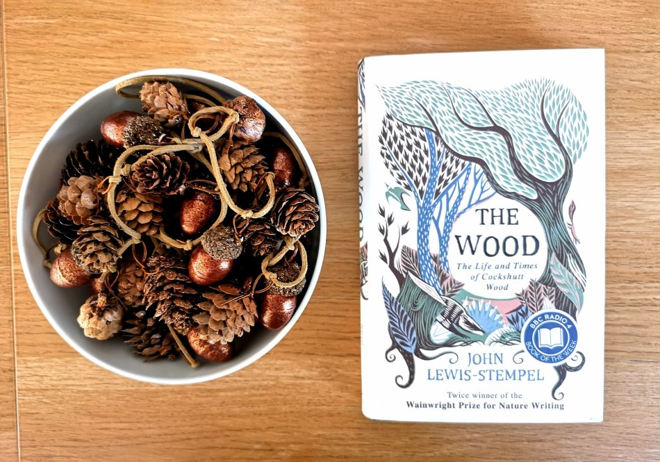 The Wood by John Lewis Stempel