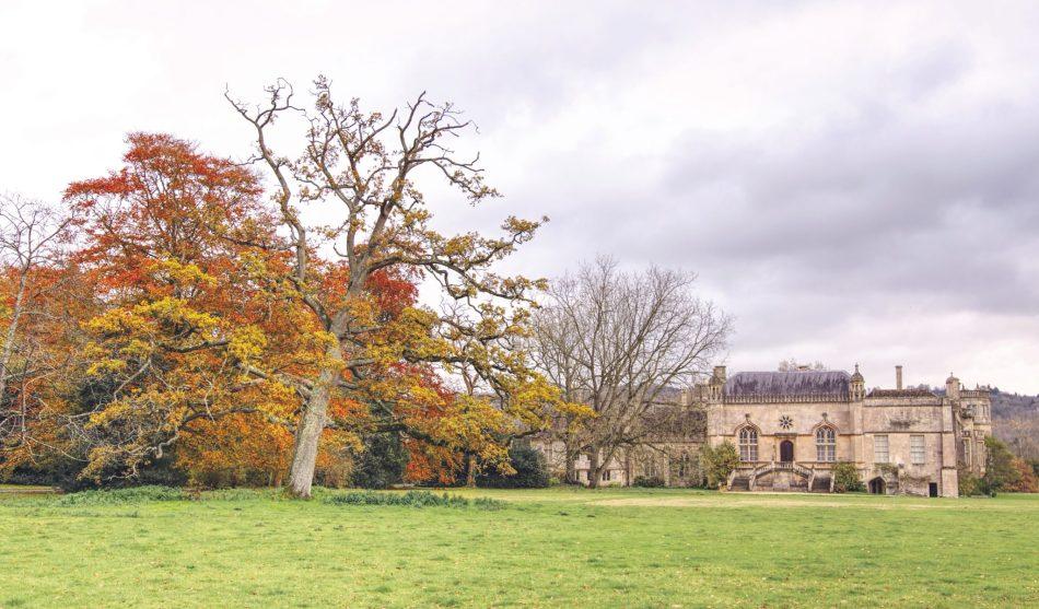 Lacock jesienią