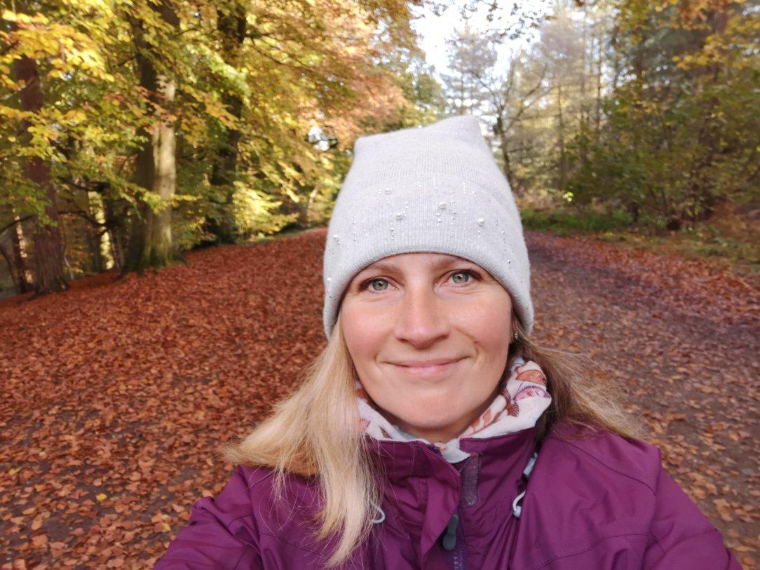 My British Journey w Delamere Forest