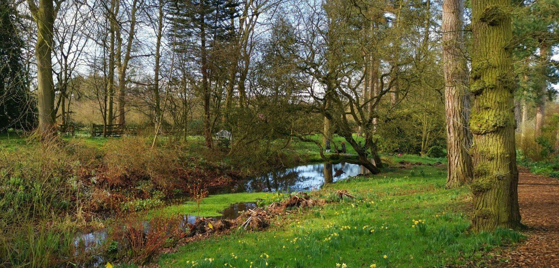 wiosenny spacer w cheshire