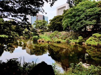 Tokyo is littered with parks