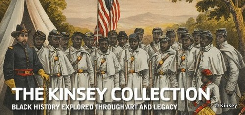 The Kinsey Collection Videos