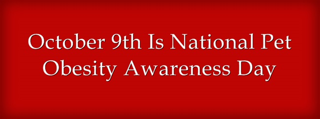 October-9th-Is-National