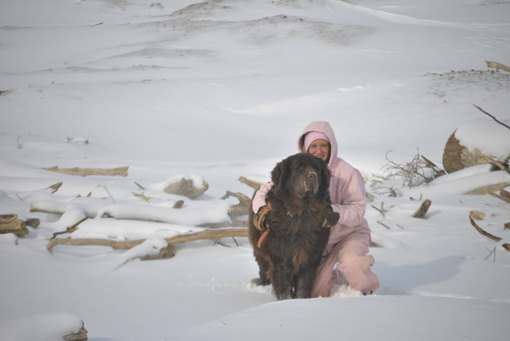 frozen lake erie 2014
