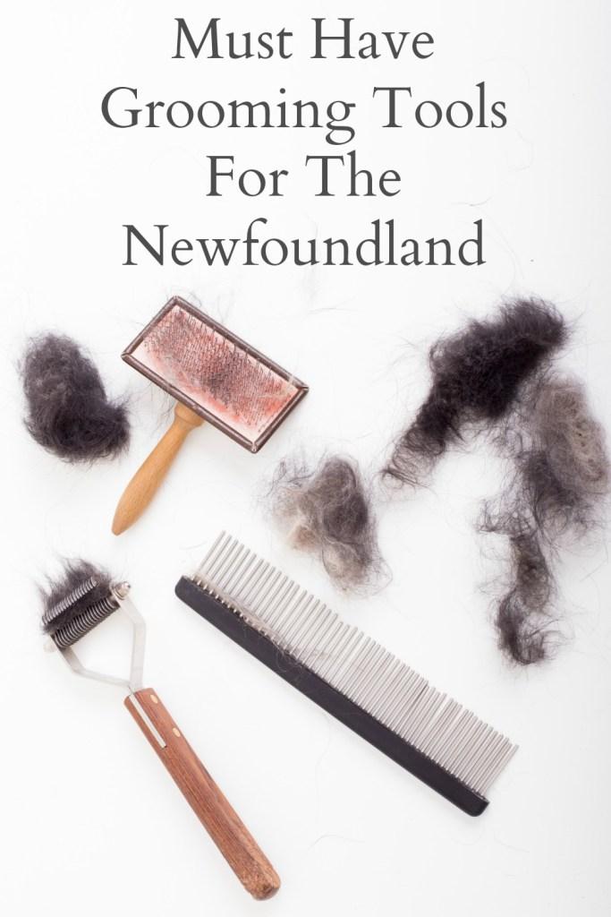 grooming tools used on the newfoundland dog