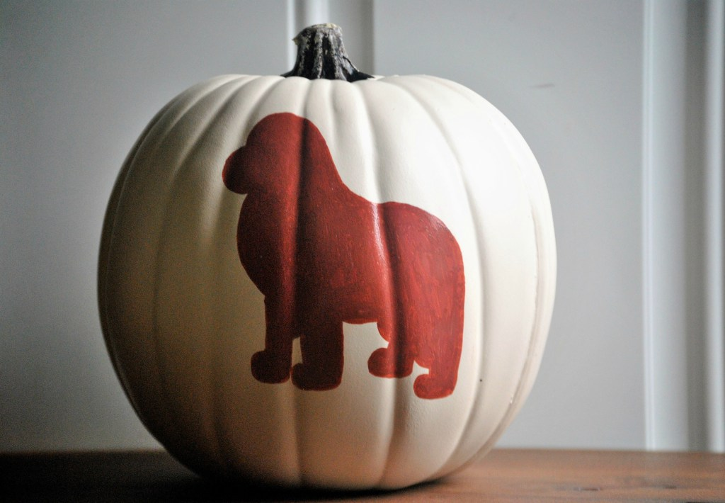 white pumpkin with brown painted newfoundland dog
