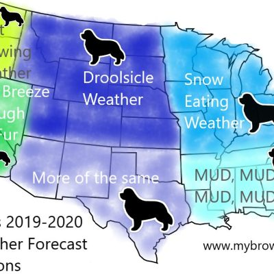 newfoundland winter map