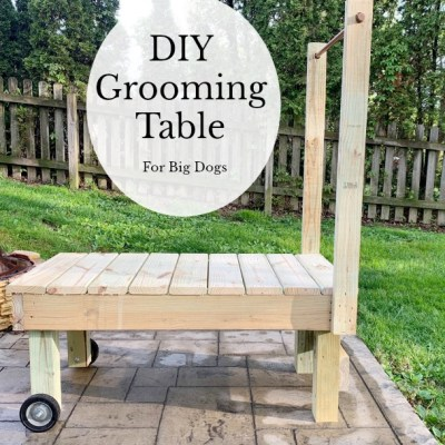 DIY Grooming Table (For Big Dogs)