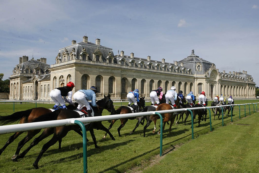 Plat © APRH - Chantilly - 22/06/2010 - Generalite/Ambiance -