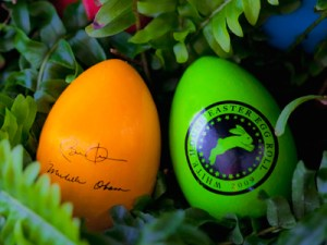 Souvenir_eggs_of_the_White_House_egg_roll_2009_
