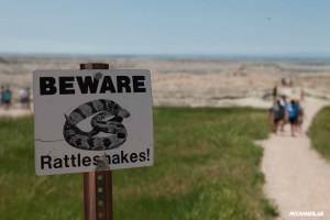 Badlands Nationalpark - Beware Rattlesnakes