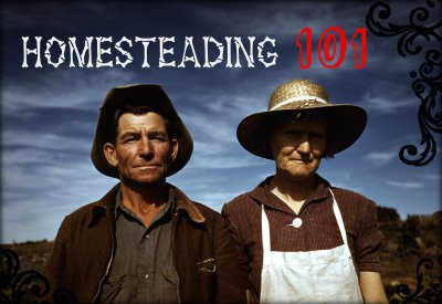 Homesteading 101 @ New Braunfels Public Library | New Braunfels | Texas | United States