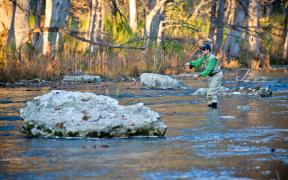 Man fly fishing on the Guadalupe River.