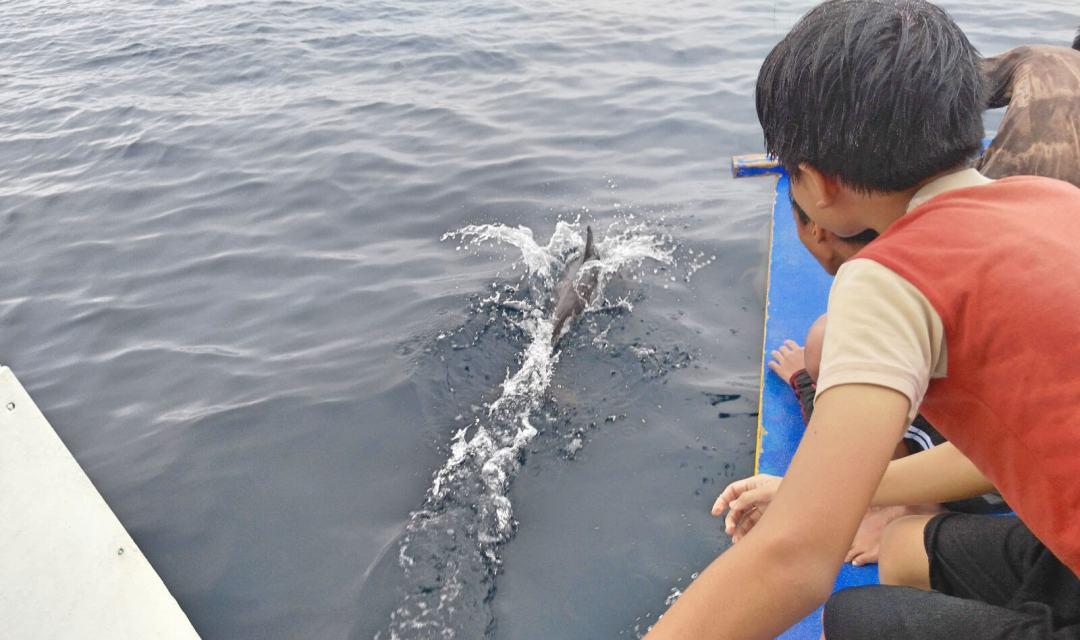 pescador-island-moalboal-2