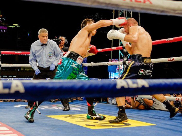 Nonito Donaire knocks out Zsolt Bedak