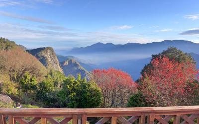 Taiwan's Alishan: Scenic views, glorious sunrise, beautiful nature