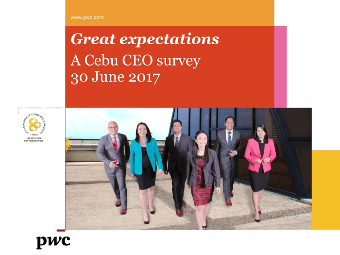 PWC Cebu CEO survey