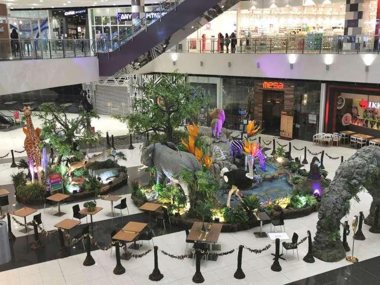 Jungle Safari SM City Bacolod