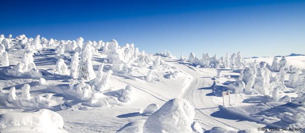 Lapland And Northern Lights Holidays