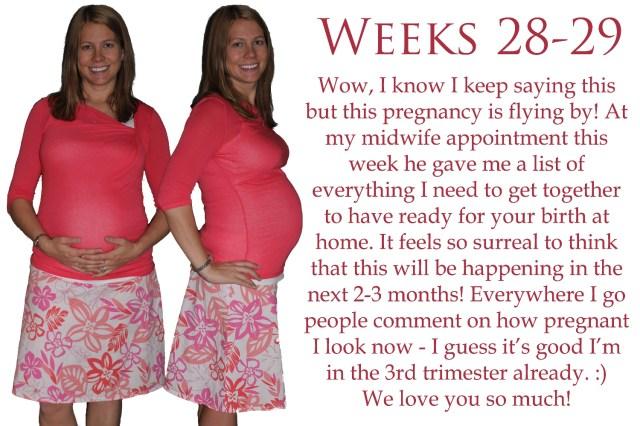Weeks28-29 copy