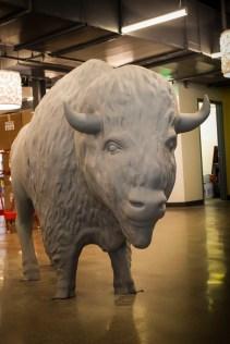 Big bison standing