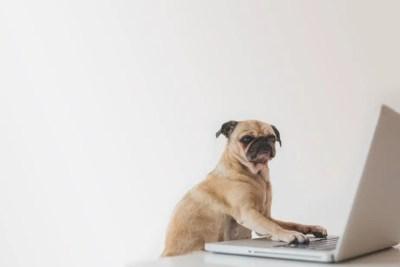 Tout ce que vous pensiez savoir sur les Chromebook est incorrect.