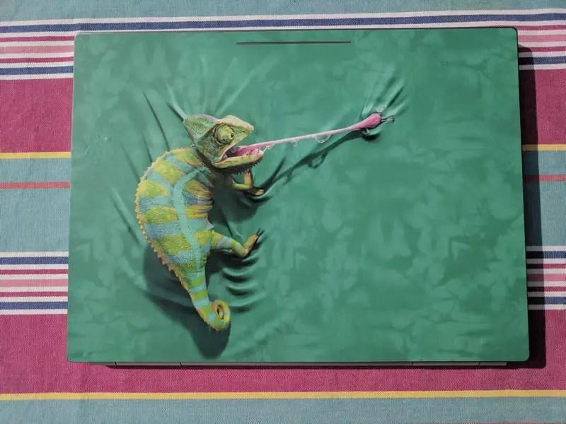 Skin Iguana deDavid Penfound
