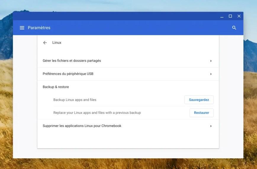 Sauvegarder et restaurer votre conteneur Linux sur ChromeOS.