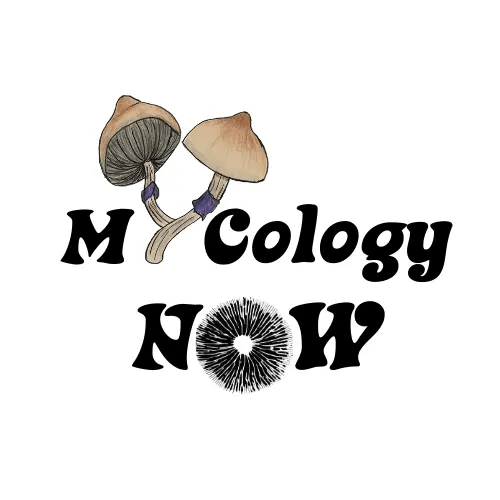 Mycology Now Logo