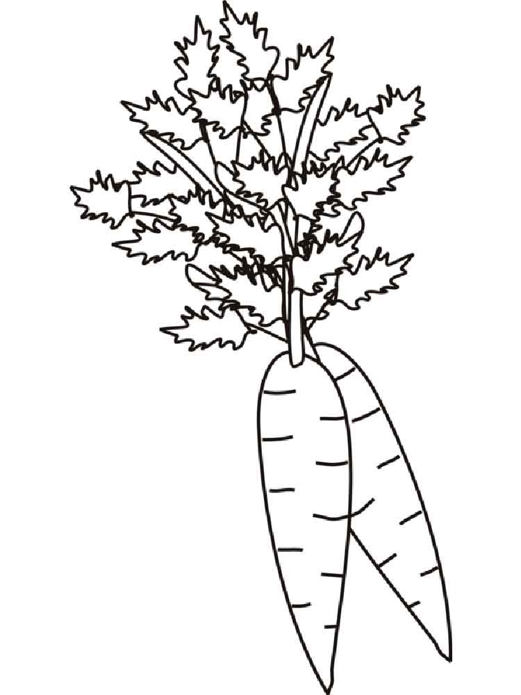 carrot coloring pages. download and print carrot coloring