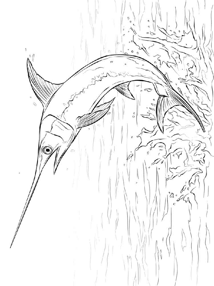 swordfish coloring pages download and print swordfish coloring pages