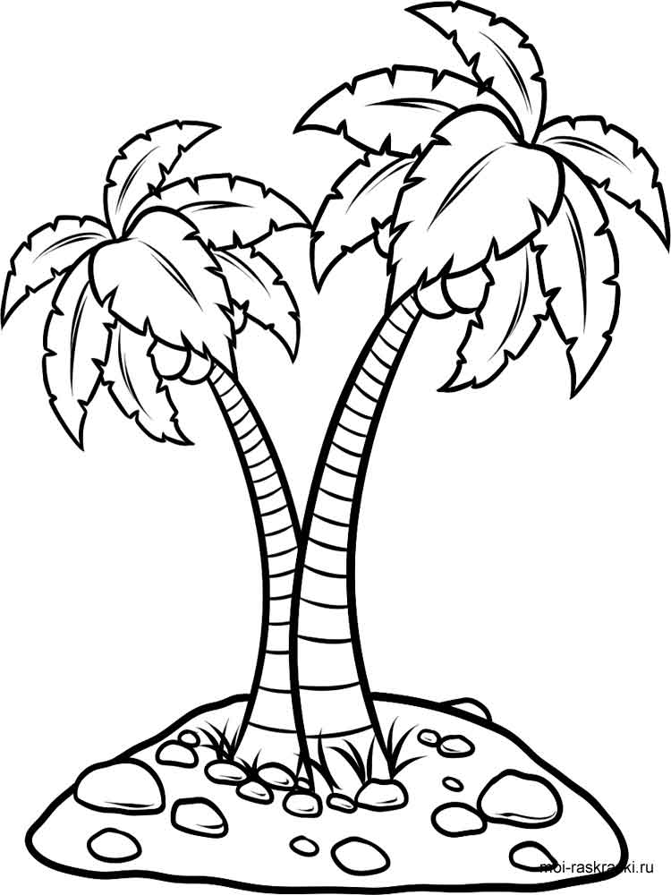 palm tree coloring pages for kids free printable palm tree