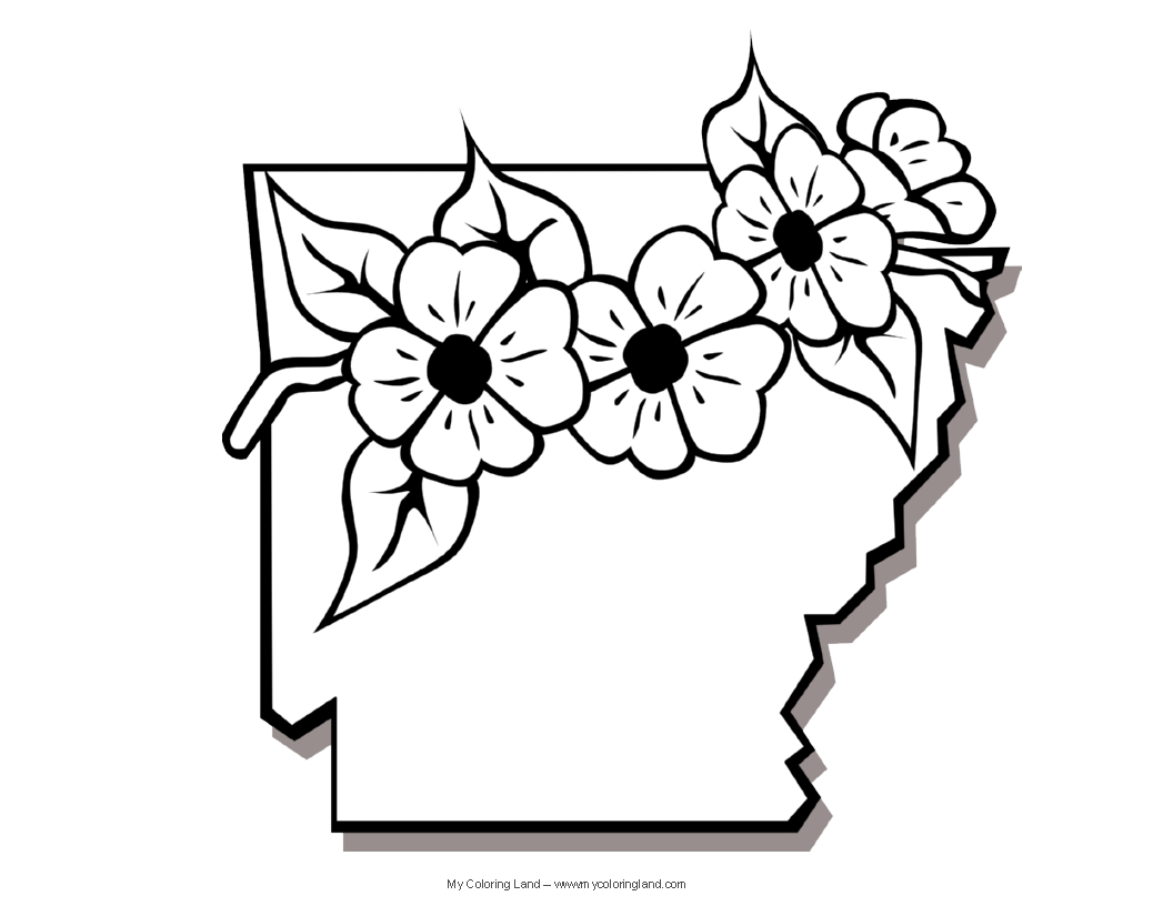 Arkansas State Flower Coloring Page