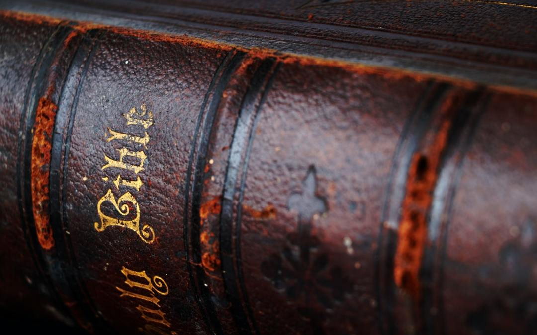 Joyology 101: Using Scripture to Escape Your Writing Predicaments rugged bible spine