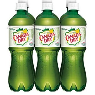 Canada Dry Diet Ginger Ale 500 ML