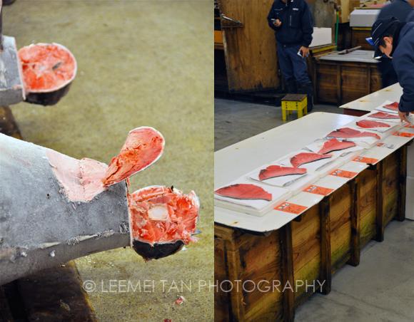 tuna-auction-2