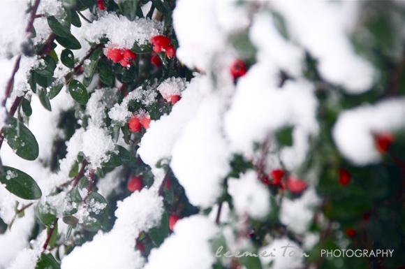 snow-london-7
