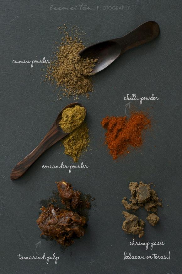 satay-ingredients-2