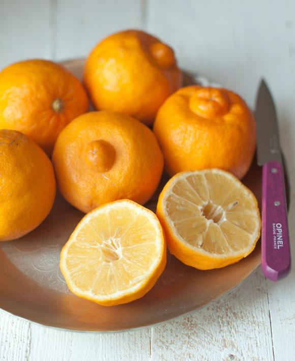 bergamot-lemons