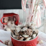 Double Chocolate Peppermint Puppy Chow