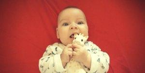 sophie - Abren a Sophie la jirafa y se encuentran con esto!