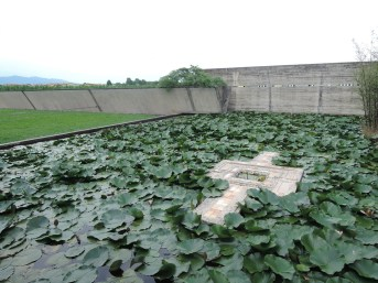 Water lilies, Brion Tomb