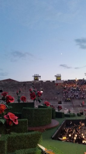 Arena, Roses and Moon