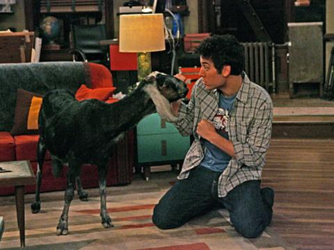 Ted and the goat ©How I met your mother wikia
