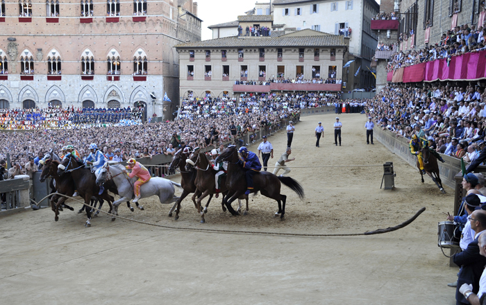 Siena Palio Facts @ilpalio.org