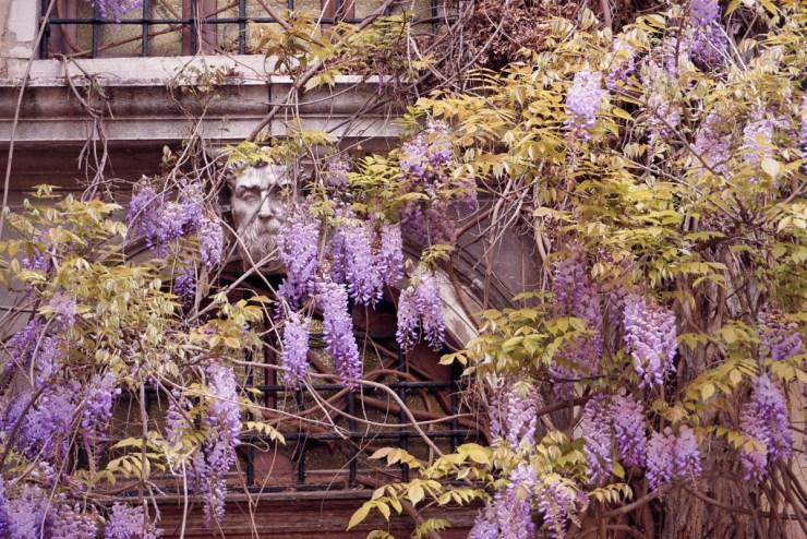 Corte Giovanelli Venice