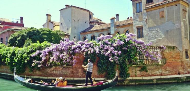 Wisteria in Venice: where to take beautiful pics