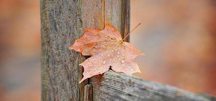 Hello November! | My Cosy Retreat