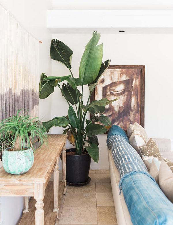 Designer Jody Olivier's peaceful bohemian bungalow   My Cosy Retreat